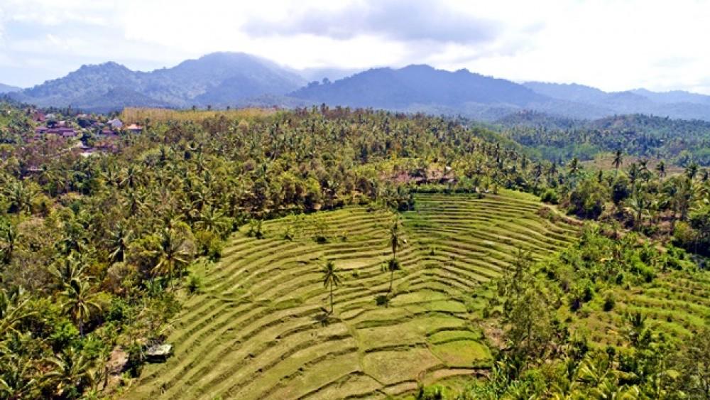 Sweeping Views Leasehold Land in Negara