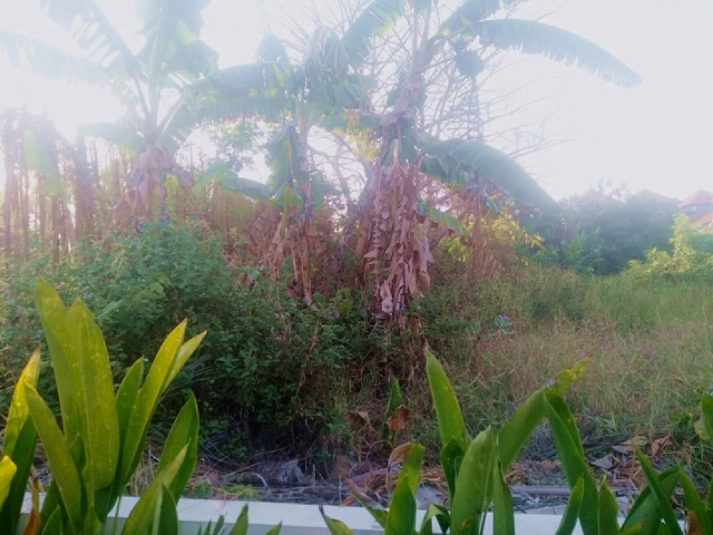 Batu Bolong Leasehold Land Close to the Beach for Sale