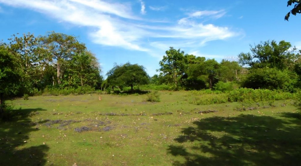 Freehold residential land for sale in Balangan