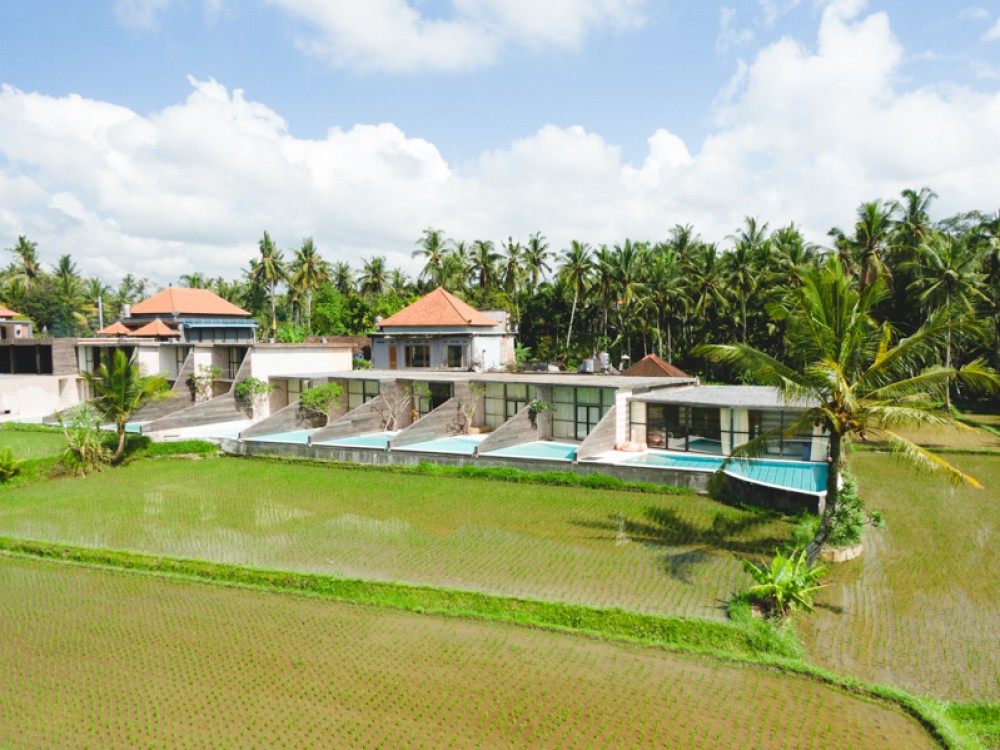Amazing Brand New Resort with Best Investment for Sale in Ubud