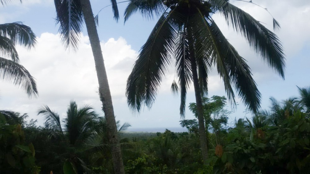 Spacious Land with Ocean View for Sale in Balian