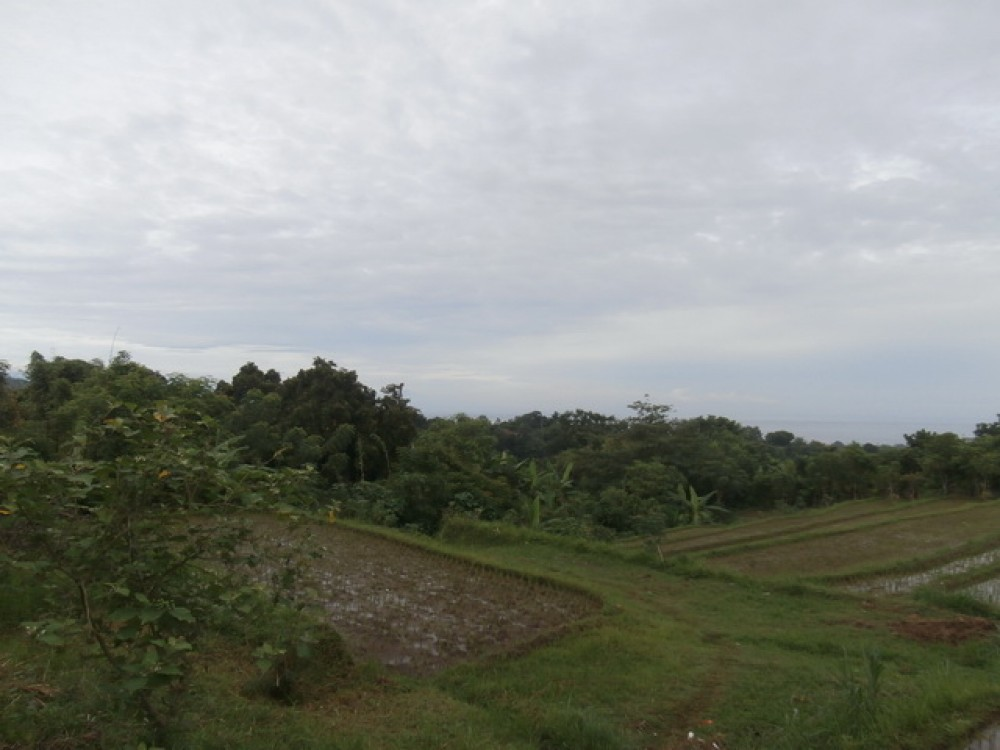 Amazing Landscape Land in North Bali for Sale