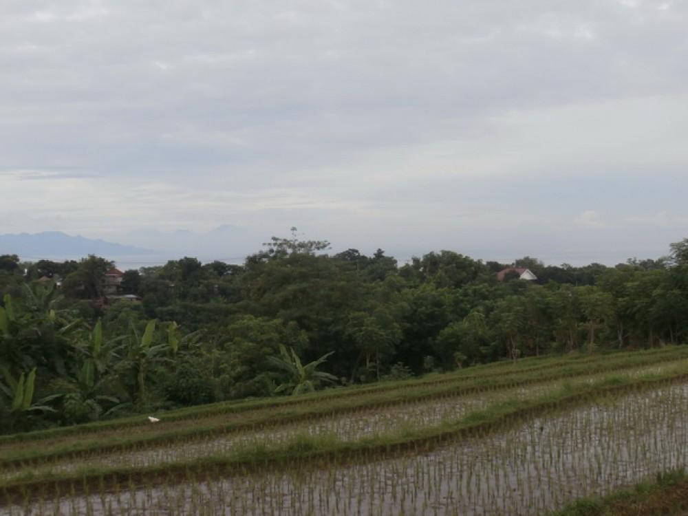Dijual Tanah Lanskap di Utara Bali Luar Biasa