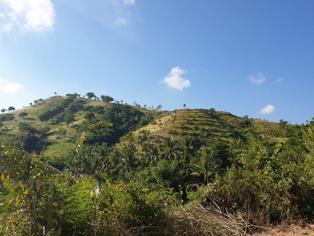 Spacious Land with Mountain View for Sale in Lombok