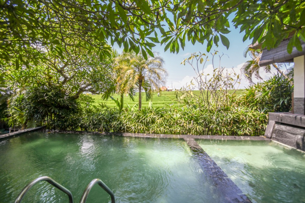 Unobstructed Rice Field View Villa for Sale in Echo Beach