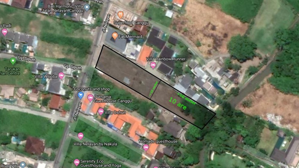 Prime Location Land for Lease in Canggu