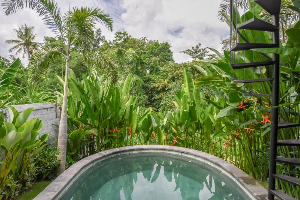 Unique One Bedroom Villa with Green View for Sale in Canggu