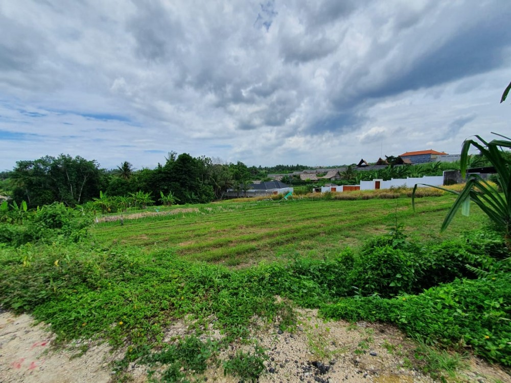 Amazing view land for sale