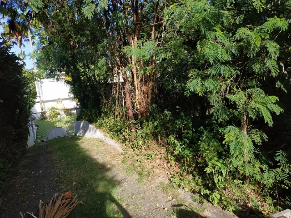 Land For Sale in Tiying Tutul (Freehold)