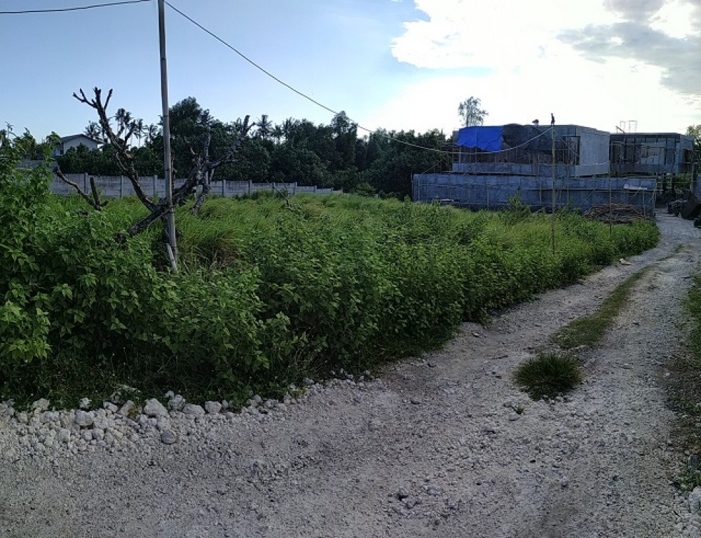 Piece of land near Pererenan Beach for sale
