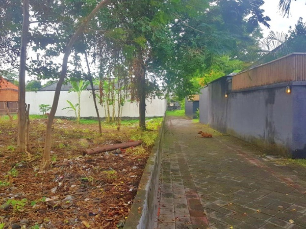 Good Location Land in Umalas for Leasehold Sale