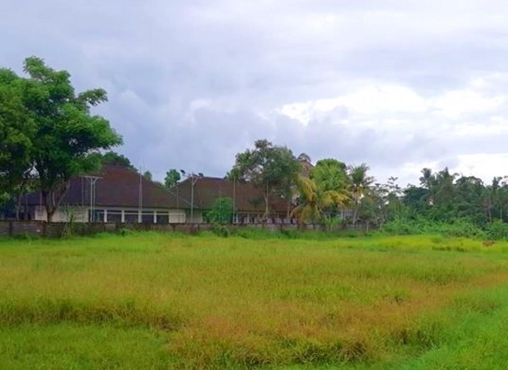 Beau terrain parfait pour le développement à Mengwi  à vendre