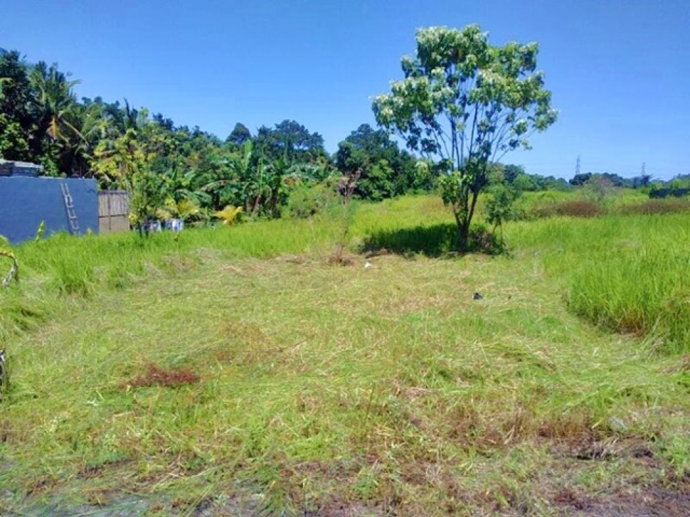 Beautiful Freehold Small Plot in Tanah Lot for Sale