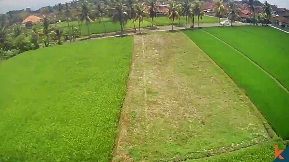 Great 7 Are Land in Kedungu for Sale