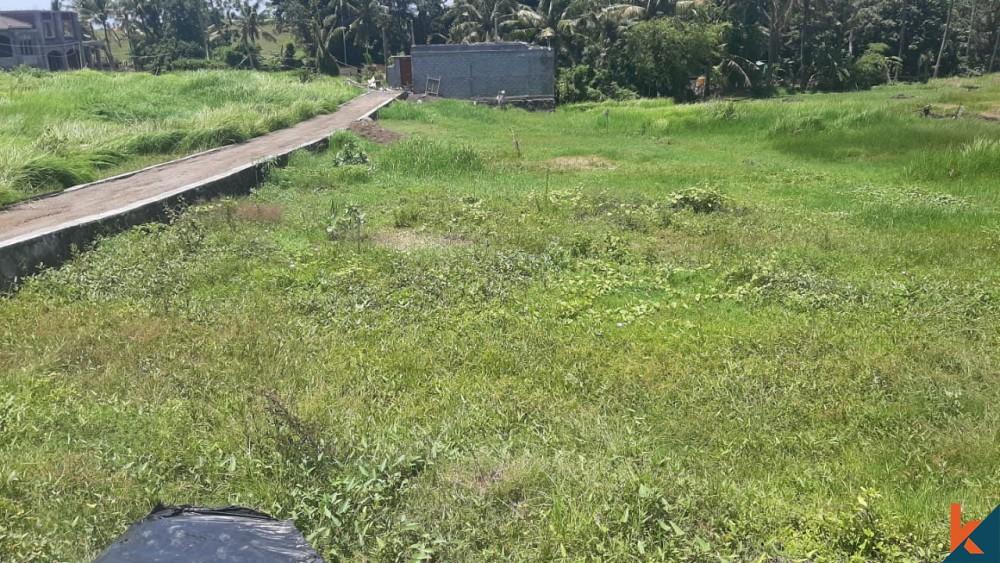 Rare small plot in pererenan