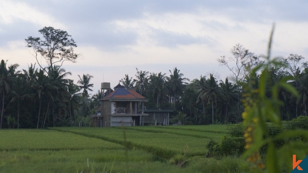AMAZING RICEFIELD VIEW LAND IN UBUD
