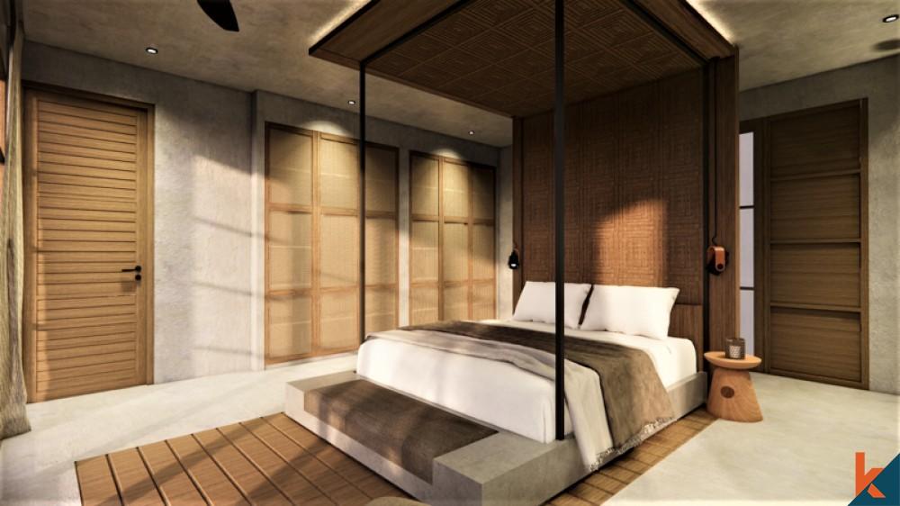 New Villa, New design in Pererenan