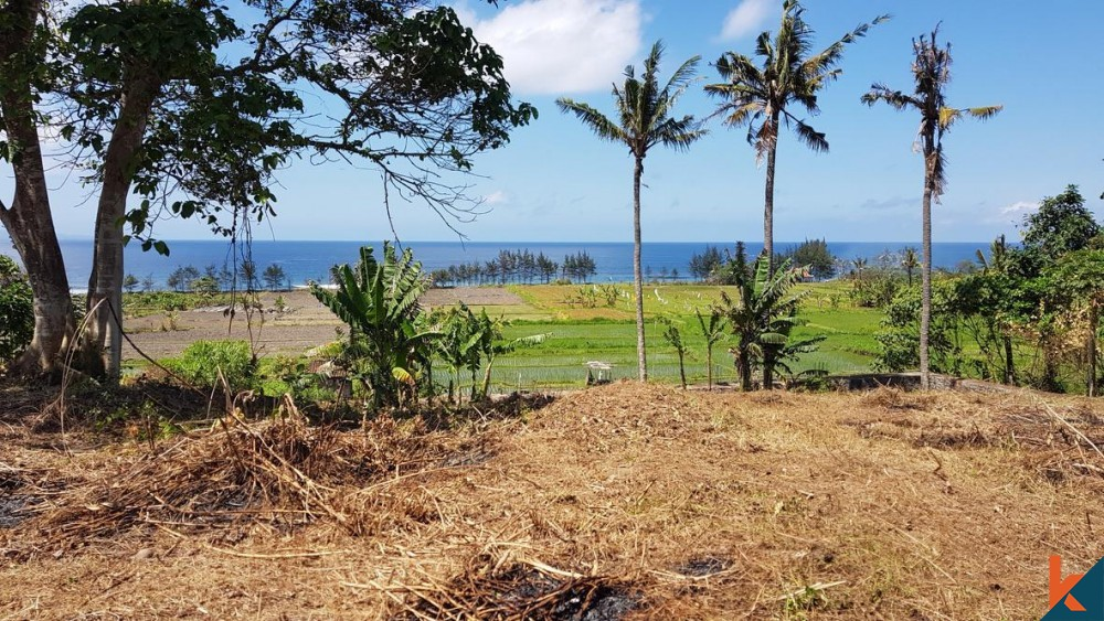 Spacious Amazing Land Walking Distance to the Beach