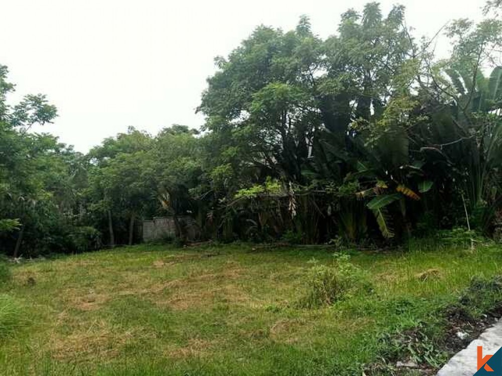 Beautiful Freehold Land in Pererenan for Sale