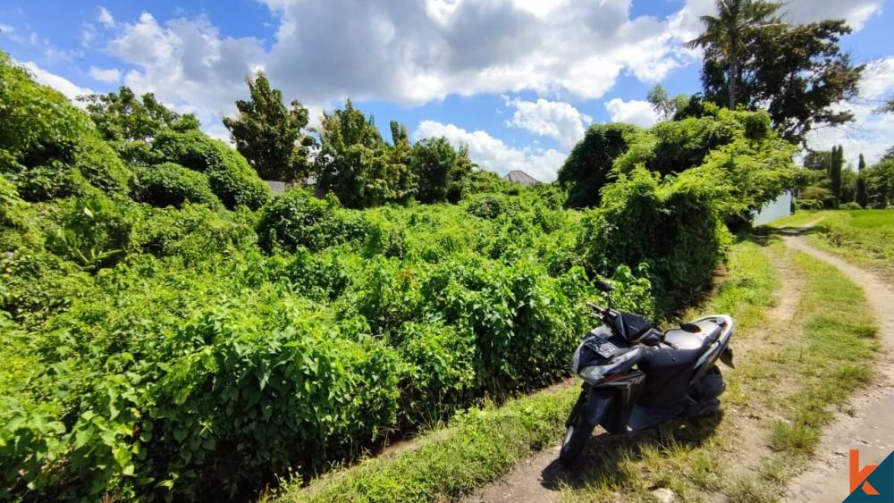 Tanah Leasehold Nilai Luar Biasa di Padonan untuk Dijual