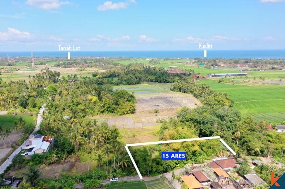 Dijual Tanah 15 Are dengan Pemandangan Menakjubkan di Pantai Kedungu