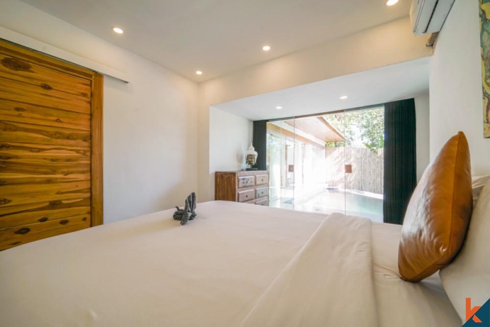 Beautiful Charming Two Villa for Sale in Kerobokan