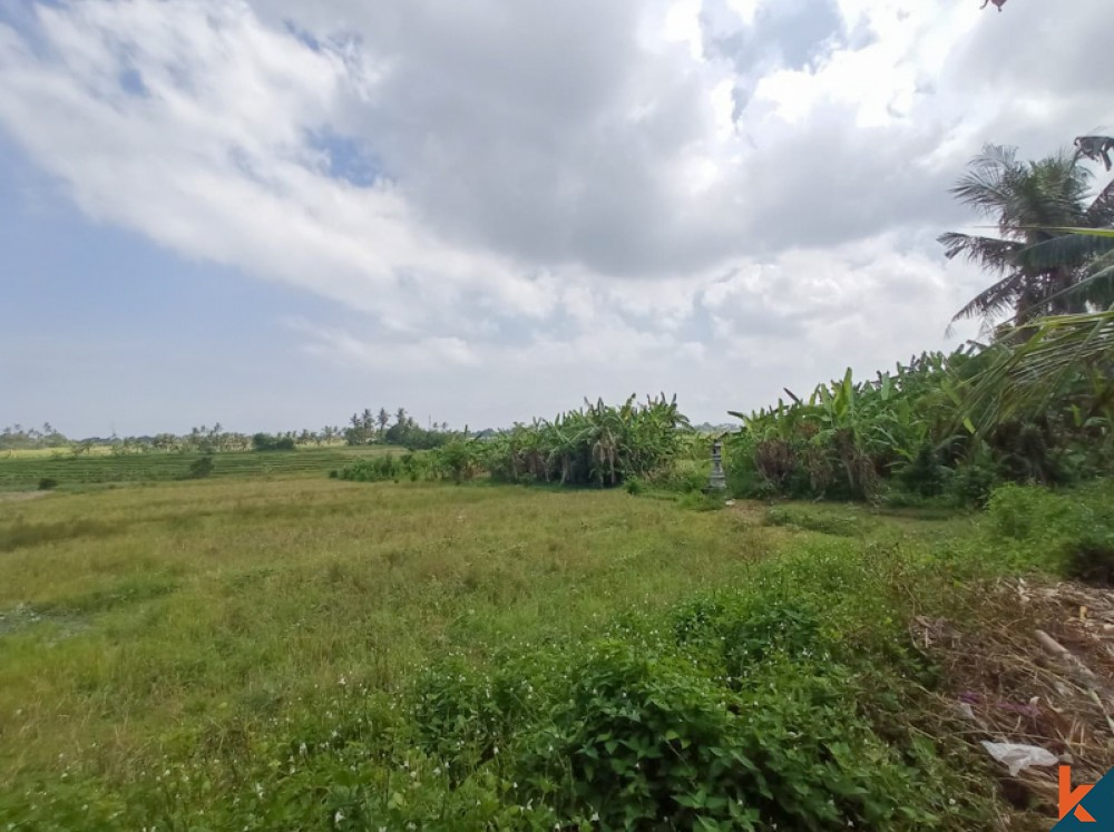 Rarely Land with Amazing Rice Paddies View for Sale in Nyanyi