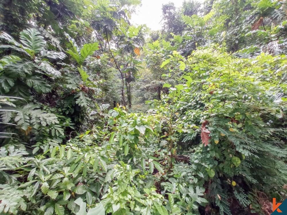 Beau terrain en pleine propriété au bord de la rivière à vendre à Nyambu