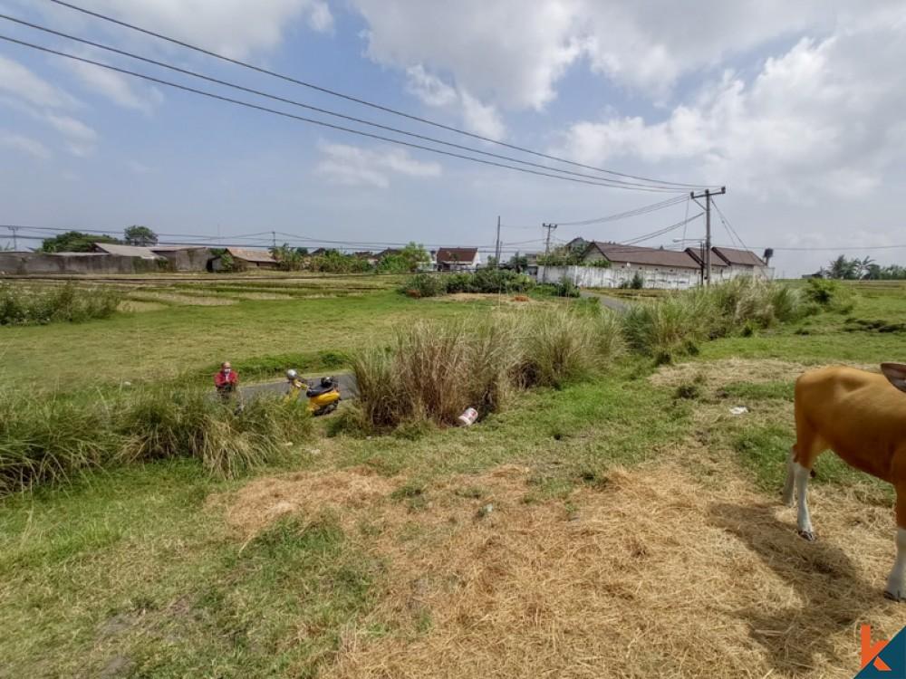 Amazing Rice Paddies Freehold Land for Sale in Kaba-kaba