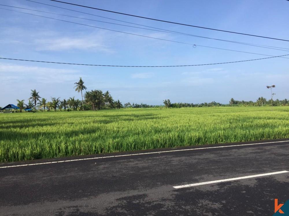 Terrain commercial avec vue sur les rizières à vendre à Kedungu