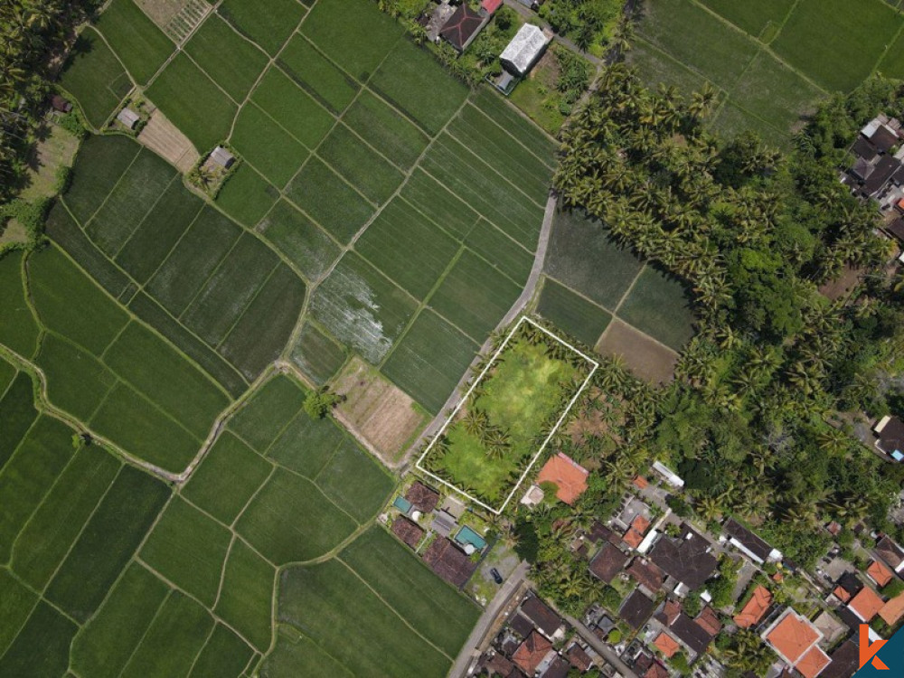 Beautiful leasehold land with rice fields , mountain views , IMB and  project for villa