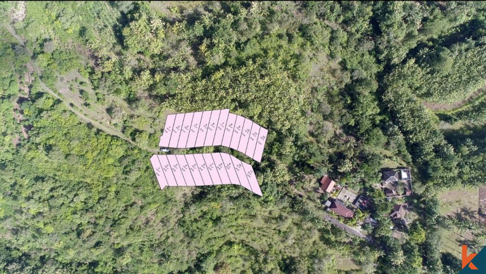 Amazing Small Plot in Nusa Penida for Sale