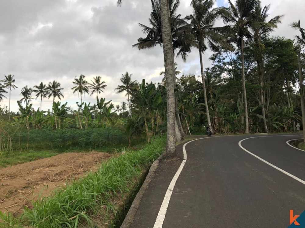 Besar-besaran 49,5 adalah Tanah Hak Milik di Mengwi untuk Dijual