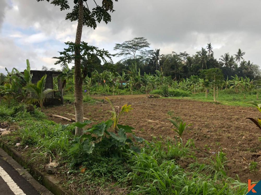 Sebidang Tanah Menakjubkan di Mengwi Dijual