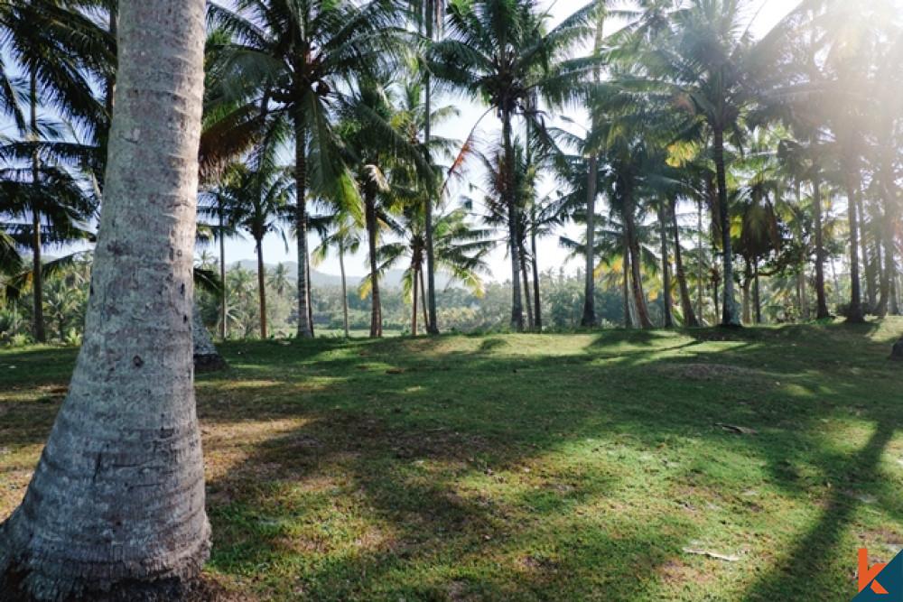 Tanah Hak Milik yang Menakjubkan dan Luas Hanya Beberapa Langkah dari Pantai Dijual